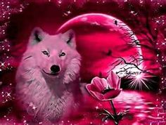 68 Ideas for wolf love art spirit animal Beautiful Wolves, Animals Beautiful, Cute Animals, Wild Animals, Wolf Photos, Wolf Pictures, Wolf Background, Gato Anime, Wolf Artwork