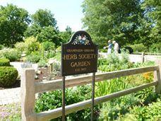 Champaign-Urbana Herb Society's garden 10380887_647853935283965_7378001304618074239_n.jpg (228×171)