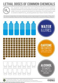 Schau dir hier an welche Mengen an Wasser, Alkohol und Kaffee für einen Menschen tödlich sind - BuzzerStar.com  Interessante Neuigkeiten aus der Welt auf BuzzerStar.com : BuzzerStar News - http://www.buzzerstar.com/schau-dir-hier-an-welche-mengen-an-wasser-alkohol-und-kaffee-fuer-einen-menschen-toedlich-sind-b28c037c9.html