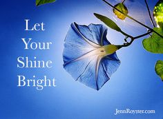 is the world's largest social network for good, a community of over 40 million people standing together, starting petitions and sharing stories that inspire action. Network For Good, Let Your Light Shine, Make Beauty, Flowers Nature, Something Blue, Shades Of Blue, Worlds Largest, Flower Power, Plant Leaves