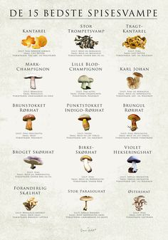 PLAKATER | Simon Holst Food N, Food And Drink, Baby Food Recipes, Vegan Recipes, Plakat Design, Cooking Cookies, Food Charts, Goat Farming, Great Pic