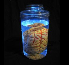 Lighted Mad Scientist Brain Human Body Part in Jar Halloween Party Prop Tabletop | eBay