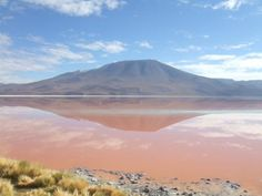 Laguna Roja, Bolivia. The colour comes from the plankton that live in the water.