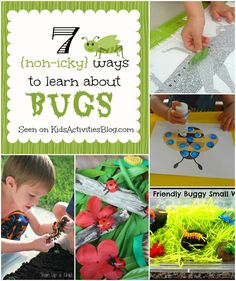 This blog about activities for kids lists 7 pleasant ways to teach and learn about bugs that will cause little squeamishness. These activities would be a great addition to a science unit about bugs and provide students with opportunities to interact with bugs and their environment in a fun and safe manner.