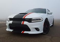 Take charge of your week.  #Dodge #Charger
