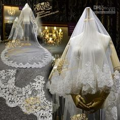 Cathedral Long Wedding Veils Lace Aged 2013  DV
