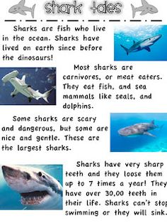 Engaging activities for learning about sharks and whales through reading (free)