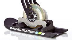 wheelchair skis!