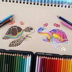 Colorir faz bem!!!! @Regrann from @floating_colour -  #Instagram #prismacolors #polychromos #drawing #painting#coloring #coloriage #colorir #colorido #colorindo #artecomoterapia #arte #art #turtle #lápisdecor #coloredpencil #colourpencil#Regrann