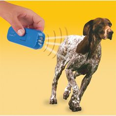 Ultrasonic Pet Trainer™