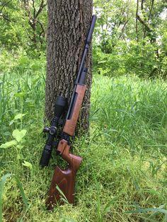 Air Rifle Hunting, Hunting Rifles, Hunting Gear, Weapons Guns, Airsoft Guns, Guns And Ammo, Pigeon Watch, Field Target, Rifle Stock