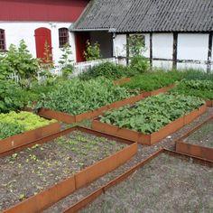 De stora avlånga blomlådorna med tvärstag är Lands mest sålda odlingslåda. Avlånga odlingslådor är särskilt lämpade för intensiv odling i köksträdgården. Sidorna monteras och förbinds med den motsatta sidan med hjälp av tvärstag. De tillverkas i galvaniserat och obehandlat järn, och tillverkas också med snigelstopp som förhindrar mördarsniglar från att förstöra odlingarna. Odlingslådorna är 25 cm höga. OBS! Om du vill ha en extra lång odlingslåda så kan du sätta ihop sidor med olika längder…