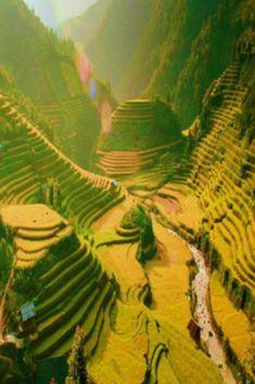 Visit Vietnam, North Vietnam, Vietnam Travel, Asia Travel, Hanoi Vietnam, Vacation Travel, Beach Travel, Budget Travel, Laos