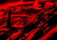 Title: #Network  #photography  by Jörg Schubert / schubertj73. Continue to experience exciting #art #photos on art blog: https://www.chanceforum.de/blog/   Titel: #Netz #Fotografie von #Jörg #Schubert / #schubertj73.  Weiter spannende #Kunst #Fotos erleben auf #Kunstblog: https://www.chanceforum.de/blog/   #artphotography #makro #macro #artworks #fotograf #photographer #foto #photo #photos #abstractart #abstrakt #abstract #monochrome #monochromo #kunstfotografie #scharf #unscharf #art #kunst