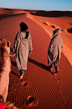 mediterraneum: Morocco - Sahara: Desert Guide by John & Tina Reid on Flickr.