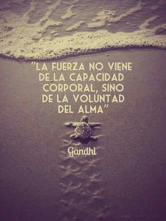La fuerza no viene de la capacidad corporal, sino de la voluntad del alma.