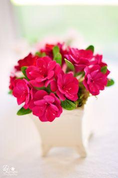 DK Designs - fuchsia pink and red azalea plant.