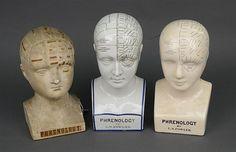 CERAMIC & PLASTER PHRENOLOGY HEADS