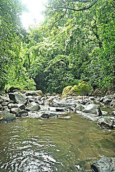 A dip in this for a while while climbing Mt. Banahaw.