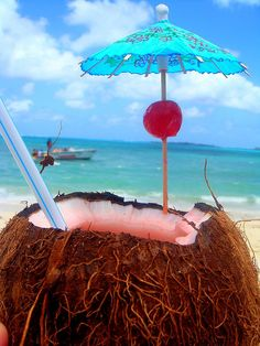 beach Coconut Cocktail #cocktails, #coconuts, #beaches, https://facebook.com/apps/application.php?id=106186096099420
