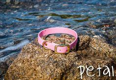 Waterproof Dog Collar in Light Pastel Pink