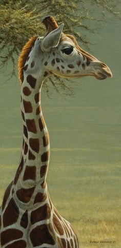Young+Giraffe+20x10,+painting+by+artist+George+Lockwood
