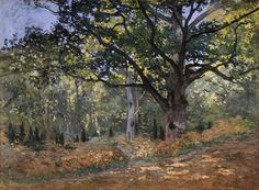 The Bodmer Oak, Fontainebleau Forest, Monet 1865
