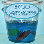 Jello aquarium