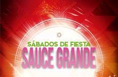 Enero y febrero 2017 - Sábados de espectáculos para disfrutar en familia en Sauce Grande Como to...