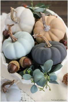 Decorating For Fall with Urban Barn