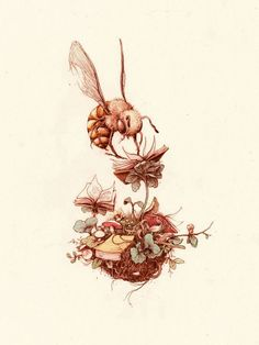 Book cover drawing by Pat Perry Pat Perry, Flor Tattoo, Illustrations, Illustration Art, I Love Bees, Bee Art, Save The Bees, Bees Knees, Bee Keeping