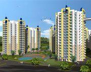 Blossom Green Faridabad - 2 / 3 BHK Furnished Apartments in Faridabad