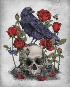 a raven on top of the victrola backed by more of my roses
