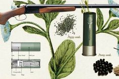 Pacifying Shotgun Bullets Explode Into Wildflowers [Pics]