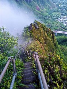 Happy, But Not Unscathed: Climbing the Haiku Stairs (Stairway to Heaven) - Oahu, Hawaii
