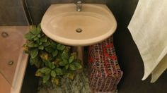 Sink & plant bathroom gamanacasa Own Home, Stool, Sink, Plant, Bathroom, Interior, Home Decor, Bathroom Before After, Sink Tops