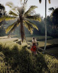 🌾 #balilove Irgendwann fliegen wir wieder nach Bali, das ist sowas von fix 🥰 Das nächste Mal dann mit unserem 👶🏼. Solltet ihr auch mal nach Bali wollen, findet ihr auf unserem Blog ein Travel Diary vollgepackt mit den coolsten Tipps für 3 Wochen Bali 🙋🏼♀️ wo wollt ihr unbedingt nochmal hin ?? #travellove #traveltheworld #balilover Komodo, Ubud, Bali, Hotels, Das Hotel, Kanken Backpack, Things To Do, Instagram, Earth Quake