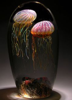 Double Jellyfish. Passion Moon and Gold Ruby Jellyfish intertwined. Created by Satava Art Glass. These are blown glass jellyfish, not the real thing. Really unique!