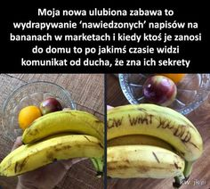 Polish Memes, Funny Mems, Some Quotes, My Tumblr, Wtf Funny, Pranks, Best Memes, Fun Facts, Haha