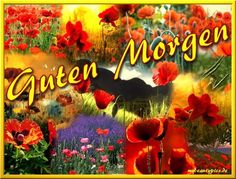 guten morgen zusammen und einen schönen tag - http://guten-morgen-bilder.de/bilder/guten-morgen-zusammen-und-einen-schoenen-tag-206/
