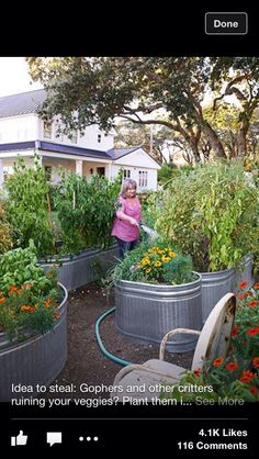 Plant Them In Galvanized Troughs! Jann Blazona California Garden    Farmhouse Decorating And Garden Ideas   Country Living