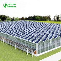 What Is Greenhouse Farming? Greenhouse Farming, Large Greenhouse, Best Greenhouse, Hydroponic Farming, Greenhouse Plans, Greenhouses For Sale, Commercial Greenhouse, Vertical Farming, Aquaponics