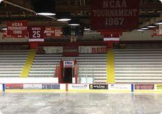 Cornell University Men's and Women's Hockey Graphics - MetroMedia Technologies