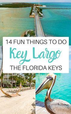 Visit Florida, Florida Beaches, Florida Keys Honeymoon, Miami Florida Vacation, Bradenton Florida, South Florida, Miami To Key Largo, Key Largo Florida, Places To Travel