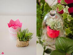 Succulent plant Planting Succulents, Event Design, Glass Vase, Neon, Plants, Pink, Home Decor, Decoration Home, Room Decor