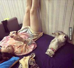 My Cat & Me!