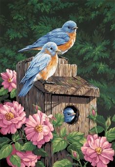 """Bluebirds""   ""Somewhere there's a bluebird of happiness..."" a song we used to sing when I was a young child."