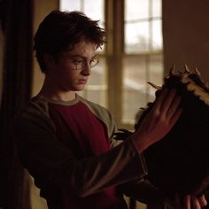 Thanks for checking out Crate Zilla. We are a Geek subscription crate in the UK and launching VERY soon! Be sure to check us out and say hello! Harry James Potter, Young Harry Potter, Daniel Radcliffe Harry Potter, Mundo Harry Potter, Harry Potter Icons, Harry Potter Pictures, Harry Potter Aesthetic, Harry Potter Cast, Harry Potter Fandom