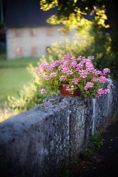So simple, and beautiful. French Country. by aftr
