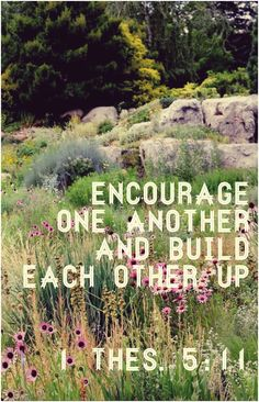 1 Thessalonians 5:11 Encourage one another and build each other up